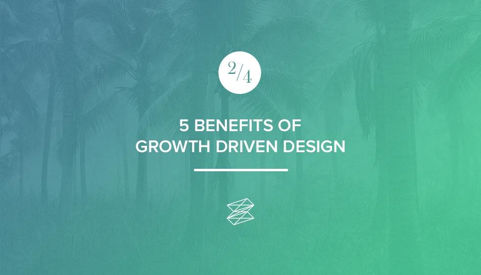 zinc-growth-driven-design_2.jpg